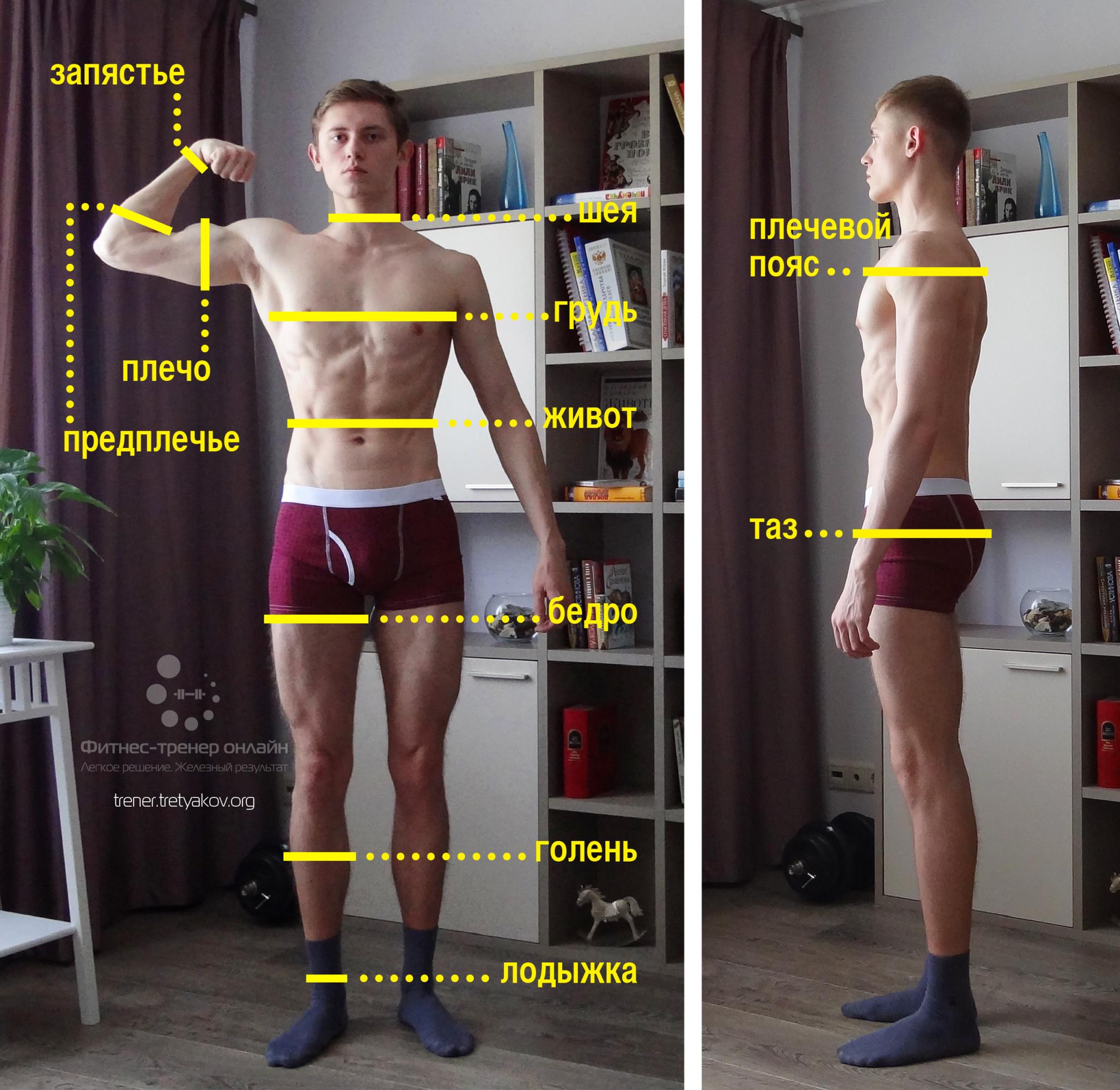 Как правильно делать замеры тела